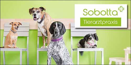 Tierarztpraxis Sobotta in Stelle