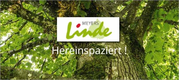Meyers Linde in Rosengarten
